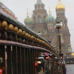 St. Petersburg Teil I: Kuscheln, Kunst und Kitsch