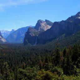 Natur und Wein in Kalifornien – Ausflug zum Yosemite National Park und zu den höchsten Bäumen der Welt