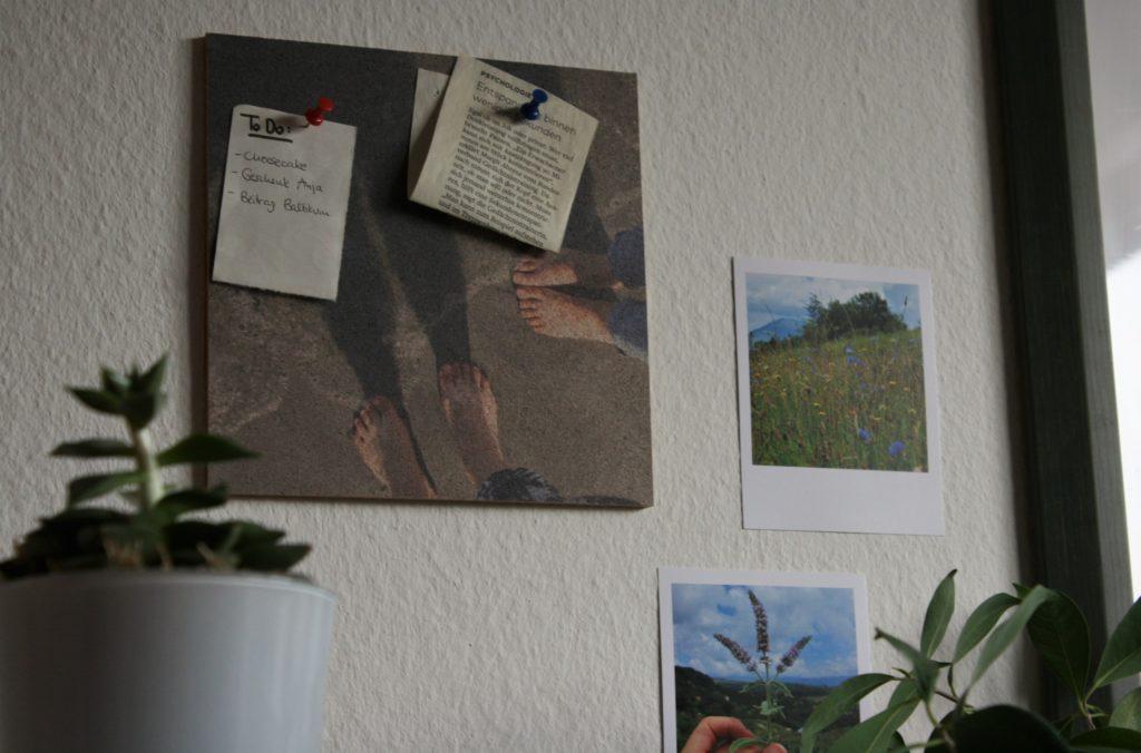 ReiseSpeisen Fotofabrik Kork