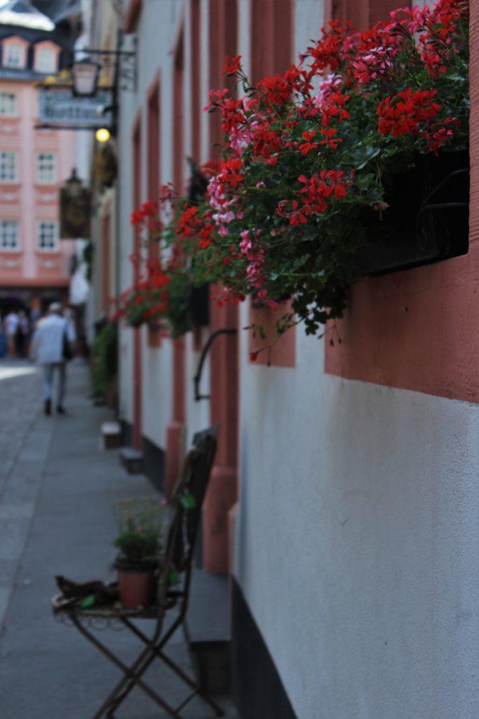 ReiseSpeisen Mainz.