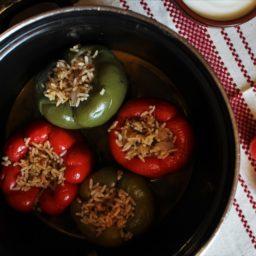 Veganes Dolma: Gefüllte Paprika mit Reis